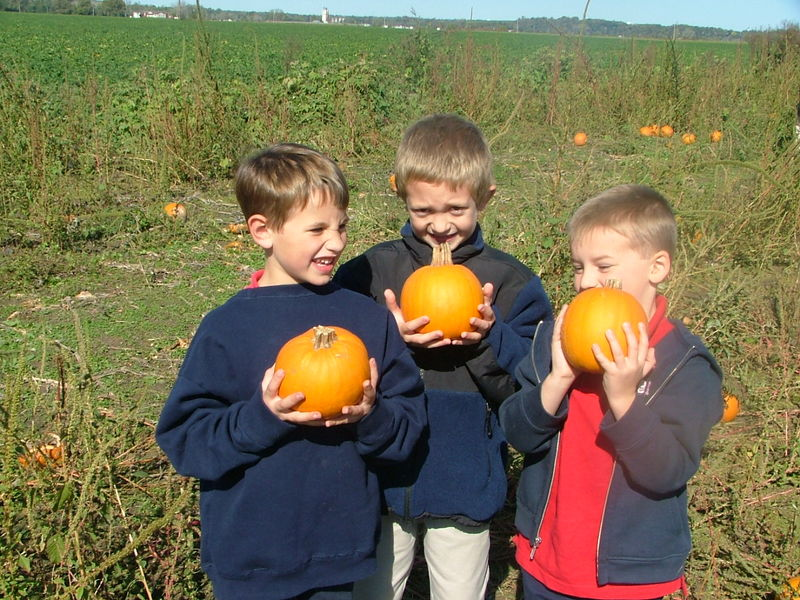 Carolyn's Pumpkin Patch 025